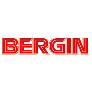 BERGIN